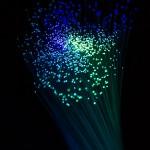 Photo: Dark Blue Fiber Bundle