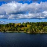 Colours of Swedish Fall