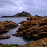 Wellington Coast