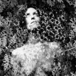 Flower Martyr